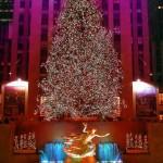 Tree Lighting Tonight