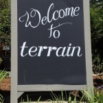 Friday Flowers: An Outing to Terrain