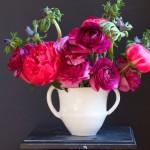 Frances Palmer – Potter, Artist, Gardener