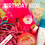 Birthday Swag Bag – Blog Hop