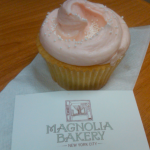 Magnolia Bakery – Icing Classes
