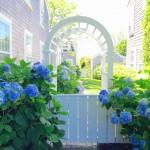 Nantucket Neighborhoods