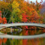 Fall Foliage – Where to Find It