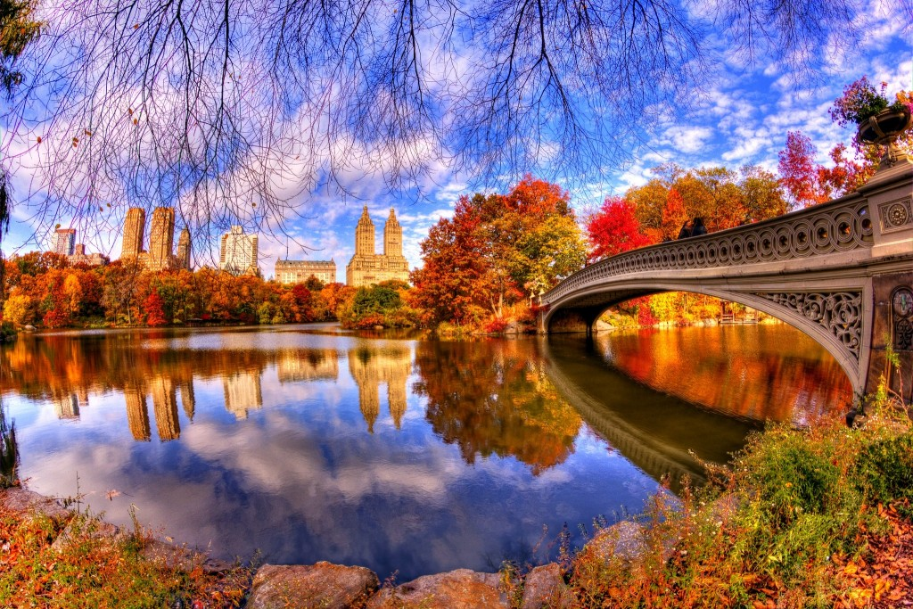 Central-Park-still-life-autumn-anuture-beauty-image-view-river