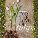 Tulip Party in Better Homes & Gardens