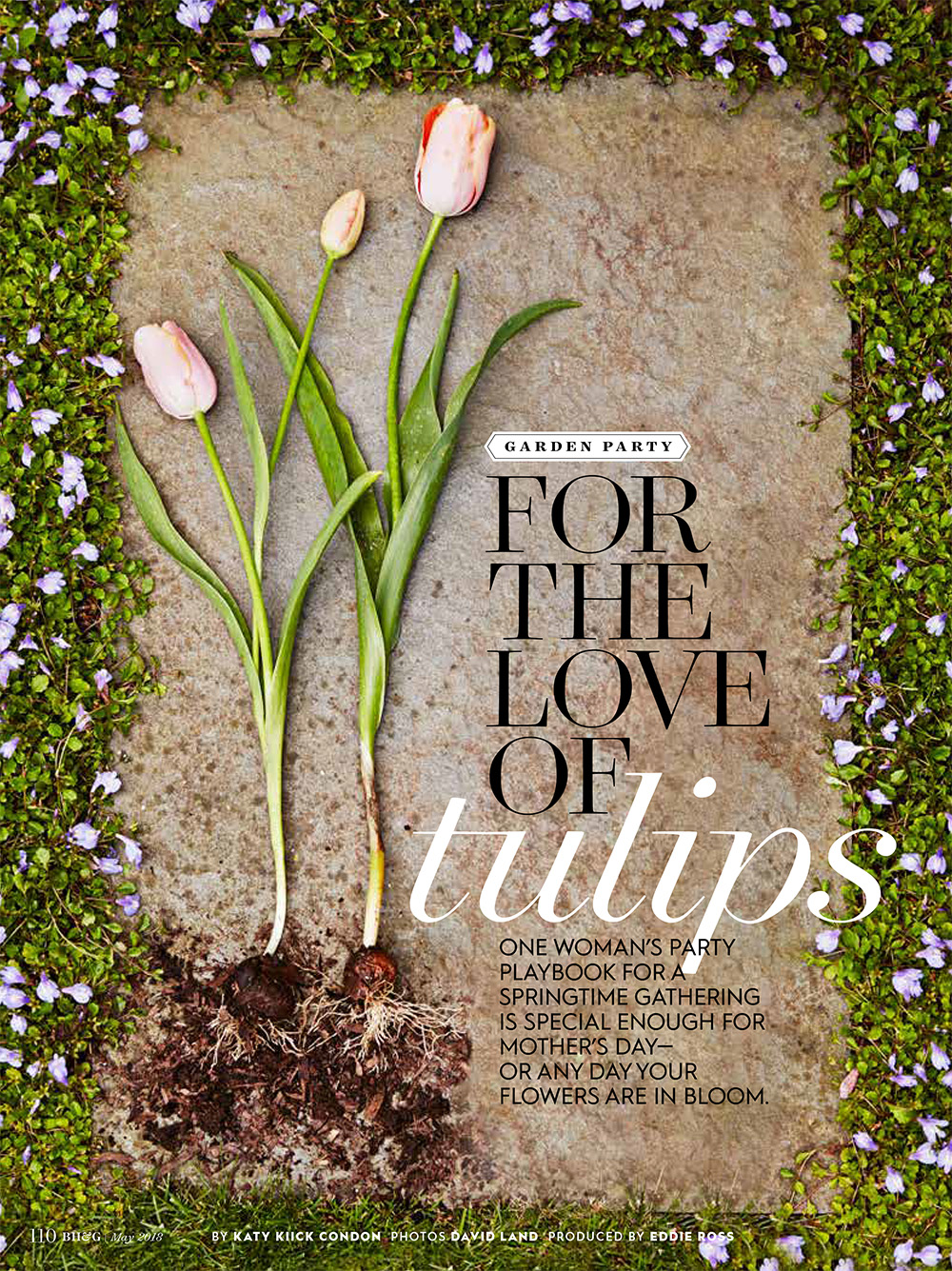 PPT Feature in Better Homes & Gardens